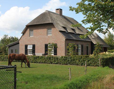 boerderij met riet (099)